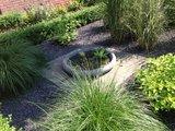 betonnen schaal met waterplanten